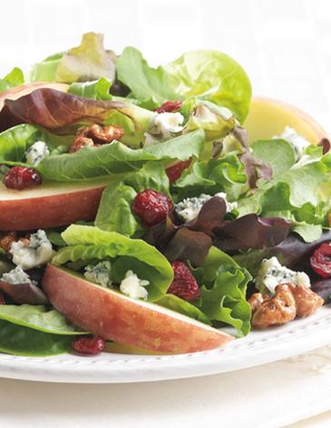 Apple Cranberry Salad